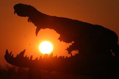 Pdf When a Crocodile Eats the Sun A Memoir of Africa FOR KINDLE